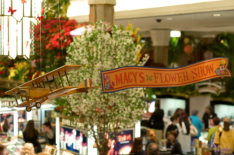 DSC_3739 flower show banner