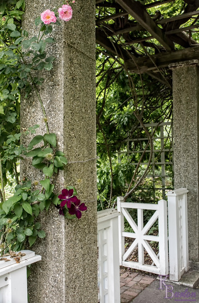 DSC_4370 Cranford Rose garden entrance