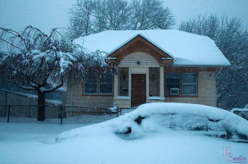 DSC_1747 2nd feb  blizzard of 2010