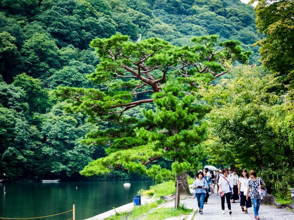 Katsura river walk
