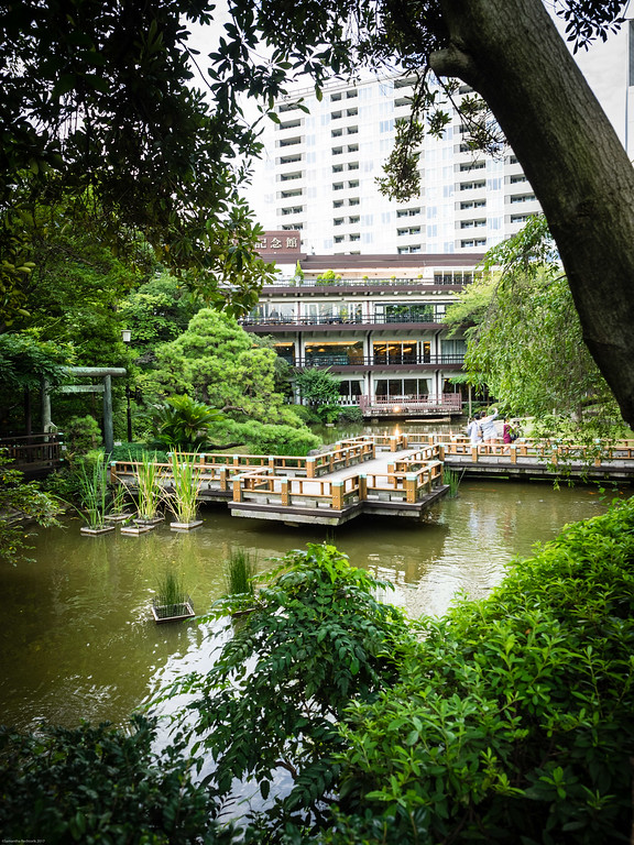 Japanese garden in the middle of the city