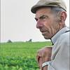 Door de velden van Schoonderbuken, de boer tijdens een babbel: hij keer ernaar en zag dat het goed was...