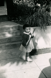 1953-02-sweeping-kats