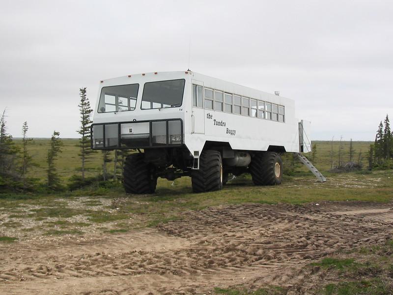 Tundra buggy in Churchill