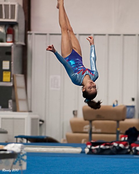 2010 Gymnastics Winter Cup