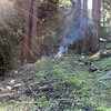 2011-01-09_3489