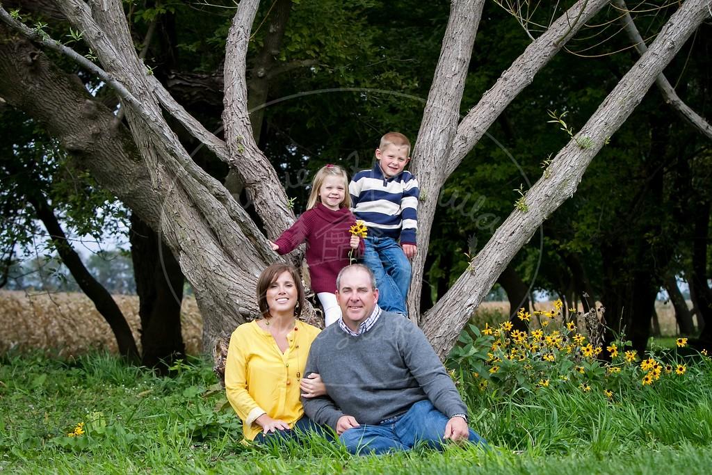 2015 Kelley Family-1845_pp