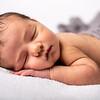 2020 2 19 Baby Jack--37