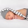 2020 2 19 Baby Jack--48