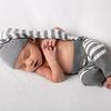 2020 2 19 Baby Jack--46