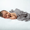 2020 2 19 Baby Jack--35