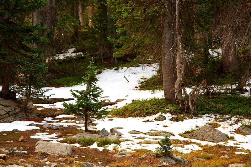 2020_9_14 Brainard Lake Recreation Area CO Edits07460