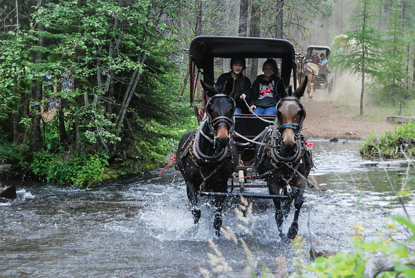 Wagon Train Trek 2019-11