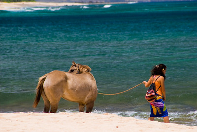 A Girl and Her Horse, Sunset Beach, North Shore of Oahu