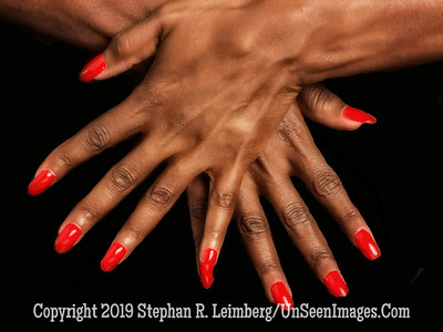 Beautiful Hands of Beverly McKenzie - Copyright Steve Leimberg - UnSeenImages Com A8435290