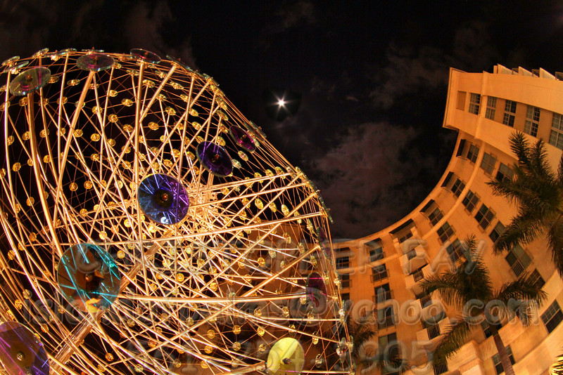 IMG_3407_Wolf_Moon_610_Clematis_22k