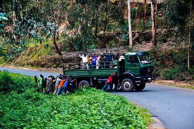 Manpower, Rwanda, 2010