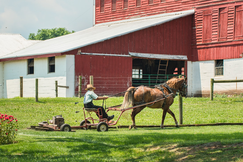 Horse Drawn Lawn Mower