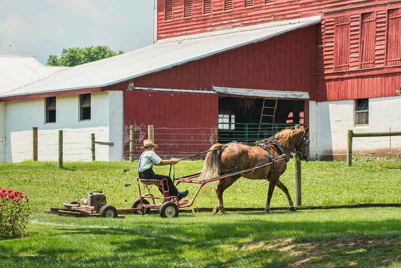 Horse Drawn Lawn Mower