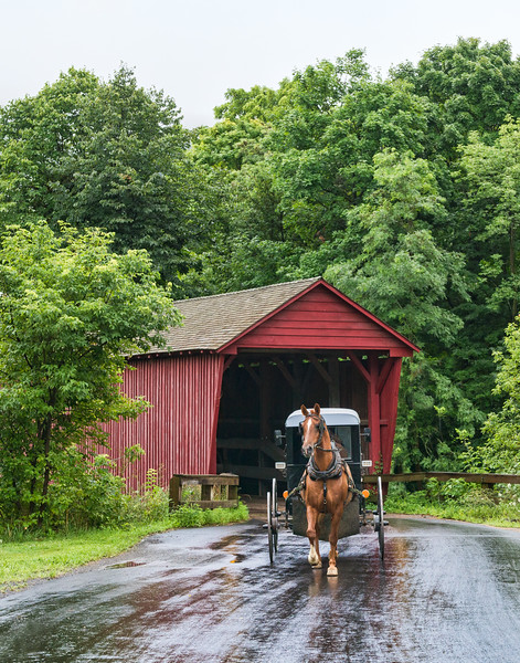 Amish Buggy Exits Covered Bridge