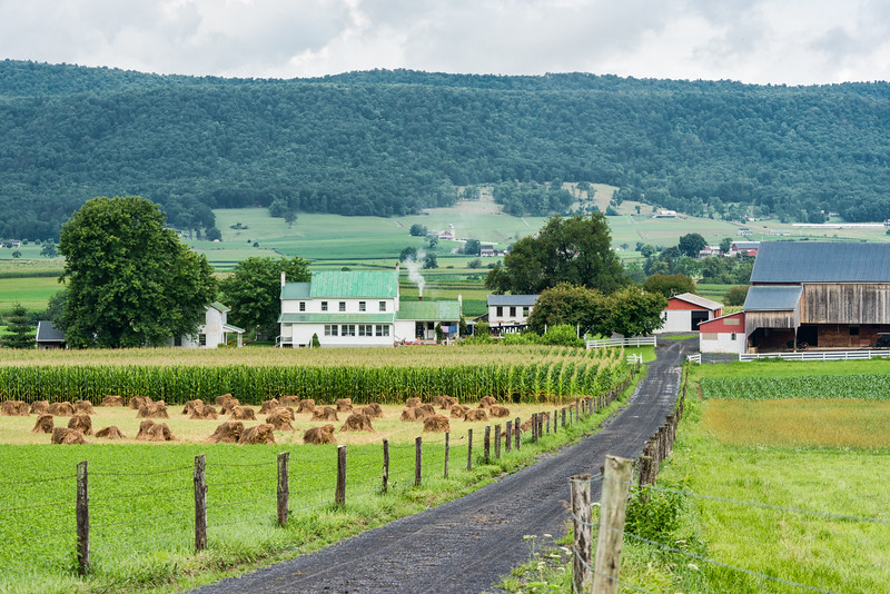 Amish Farm, Home Of Quilt Maker