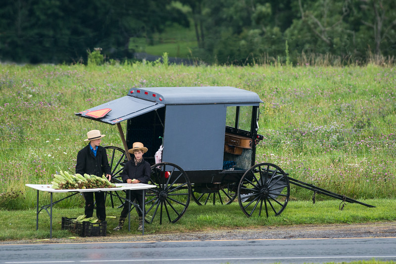 Amish Boys Selling Corn By Their Buggy