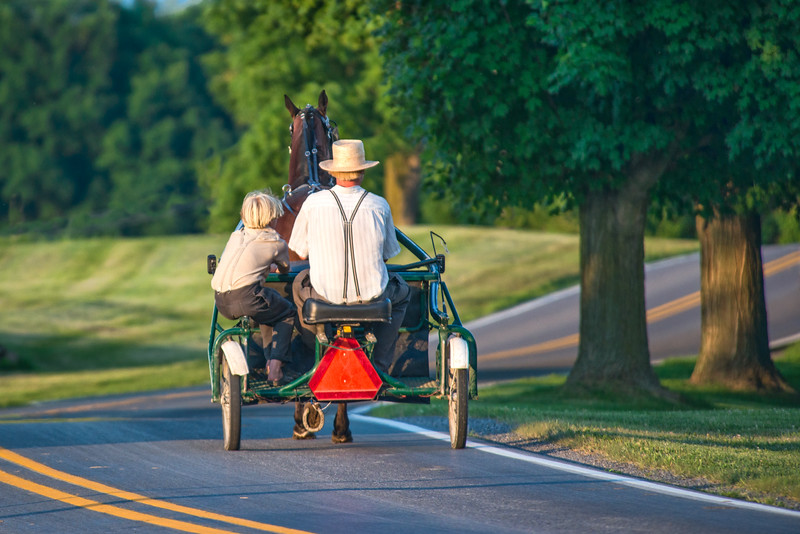 Amish Brothers Enjoying A Buggy Ride In The Cool Evening Air
