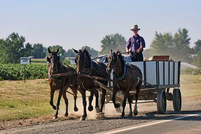 Old Order Amish  Kalona, Iowa