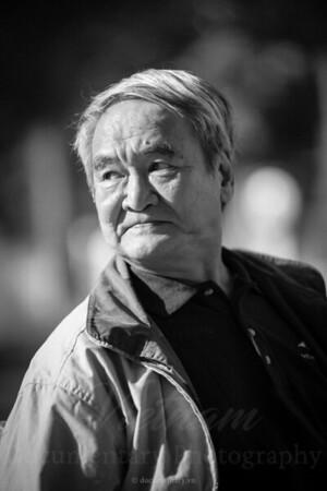 Nguyen Don Phuoc, translator