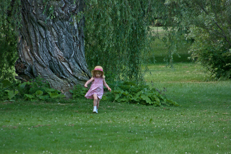 Little Girl, Big Tree