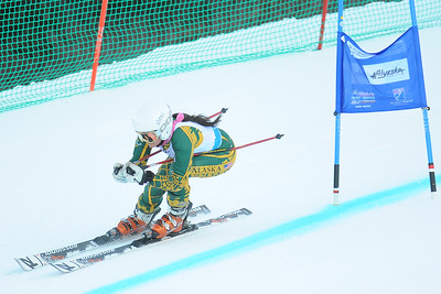 vanessa-berther-at-seawolf-invite-grand-slalom-2015-3_19164311641_o.jpg