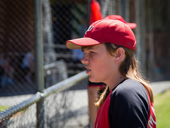 Baseball2013