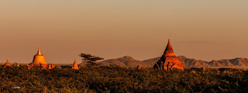 Pagodas in late afternoon sun
