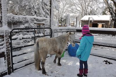 Bella Vists with Karen January 2016