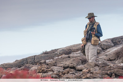 Bill Walker - Galapagos, Ecuador