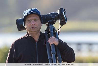 Dilip Risbud - Bird Photographer - Mountain View, CA, USA