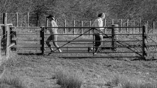 Cross Country Crossover - Lambourn Way Newbury
