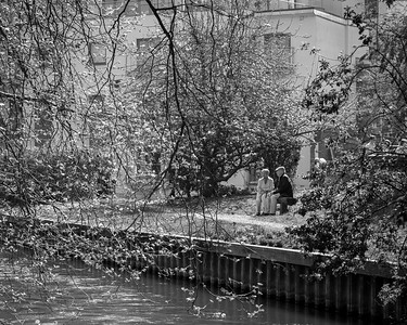 Couple through the trees - Newbury-001