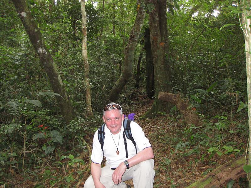 Cloud Forest, Boquete Panama