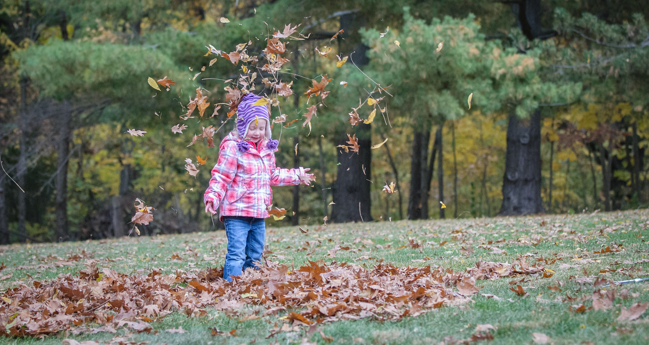 Brynn's Fall Joy