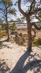 Spruce Mountain-00417