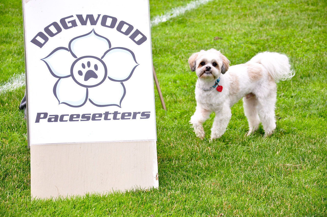 Dogwood Pacesetters