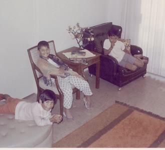 1969-04-mv-downstairs-den-joyce-joe-n-matt_mattcollection