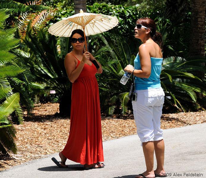 At Miami's botanical gardens