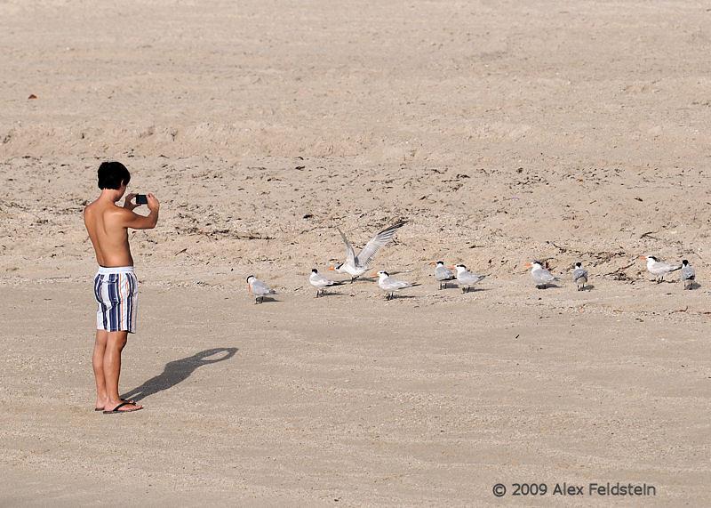 The wildlife photographer