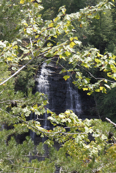 The falls at Falls Creek Falls State Park