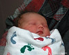 4-6-13<br /> One day old