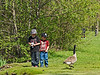 About equal amounts of wariness on both sides at this point.<br /> <br /> Part of a sequence of shots of kids braving an approach to some of the Canada geese who are year-round residents.  The boys scared themselves more than the geese scared them I'd say.<br /> Check out the expression on the face of the boy on the right.  Why his jeans are half unzipped is anyone's guess.<br /> <br /> Gallup Park, Ann Arbor<br /> April 19, 2012<br /> (nex5n)