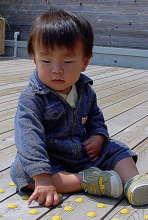 Japon Bebek, Tokyo, 2005