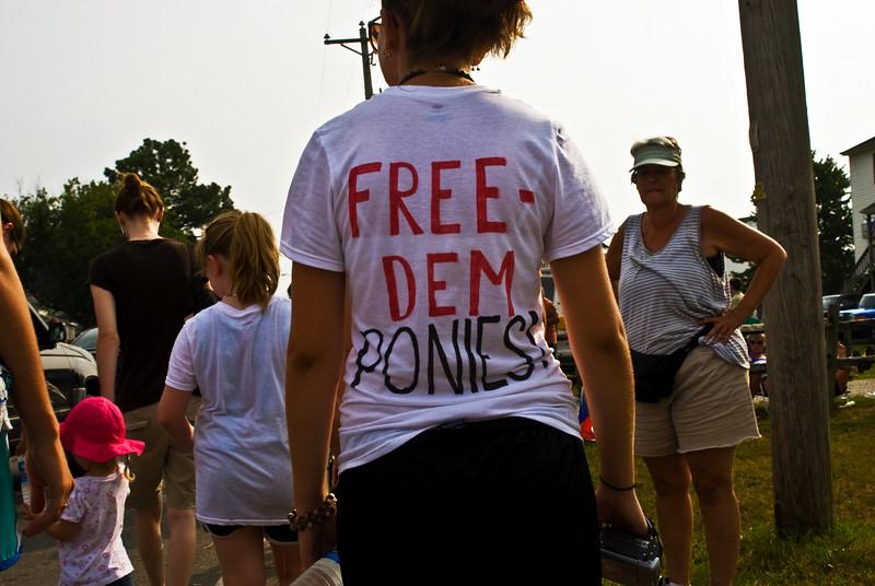 Pony Roundup, Chincoteague Island, VA. 2008.